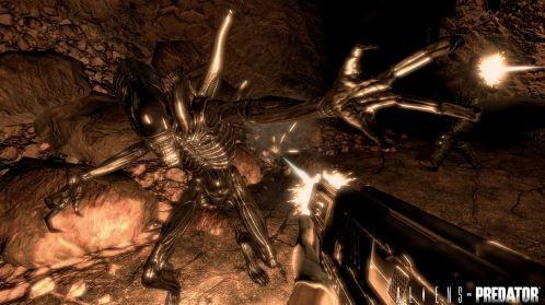 Aliens vs Predator pics